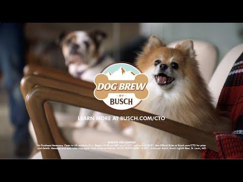 Chief-Tasting-Offficer-Busch-Dog-Brew