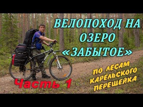 Велопоход по лесам