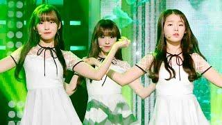 《LOVELY》 오마이걸(OH MY GIRL) - CLOSER(클로저) @인기가요 Inkigayo 20151108