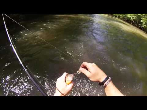 Trout Fishing The Soque River
