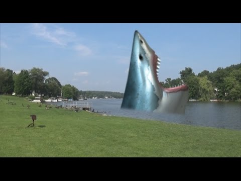 MEGALODON CAUGHT ON TAPE!!!