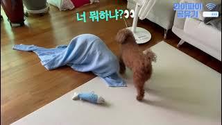 [와이파이공유기] 북청…