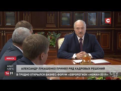 Лукашенко: Это вакханалия перед выборами! Иначе её не назовешь порой