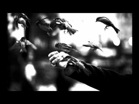 Anathema - Presence [Lyrics]