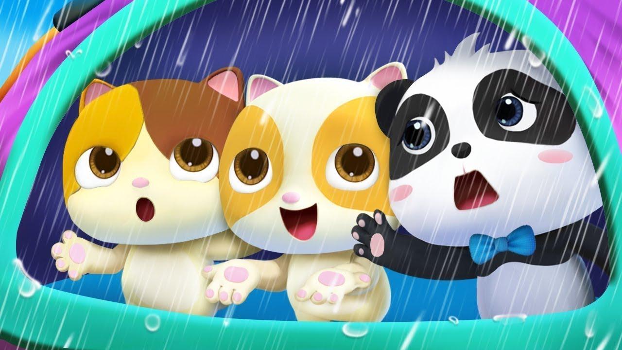 Chúng mình không thích trời mưa | Mèo con bị ốm | Nhạc thiếu nhi vui nhộn | BabyBus