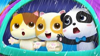 Chúng mình không thích trời mưa | Mèo c๐n bị ốm | Nhạc thiếu nhi vui nhộn | BabyBus