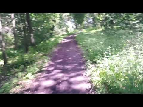 Trasa biegowa wokół jeziora Trzesiecko w Szczecinku