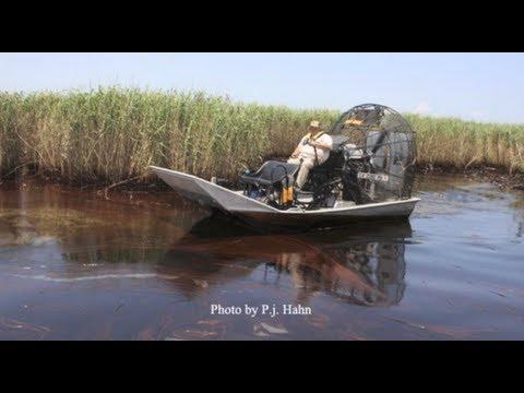 Eyewitness account of an oil spill