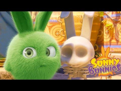 Cartoons for Children | Sunny Bunnies SUNNY BUNNIES MAGIC MAZE | Funny Cartoons For Children