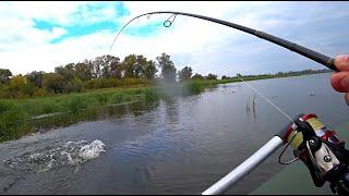 Ловля ЩУКИ на СПИННИНГ в сентябре! Рыбалка на ВОБЛЕРЫ ! Рыбалка на спиннинг!
