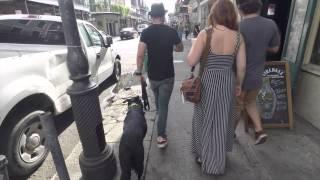 The Good Dog Minute 10/31/14: Niño, Human Aggressive Dog 5 Day Transformation!