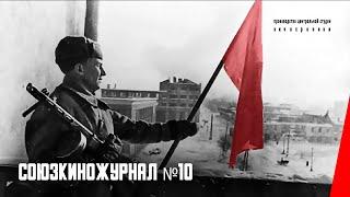 Союзкиножурнал № 10: Наступление советский войск западнее Воронежа (1943) документальный фильм