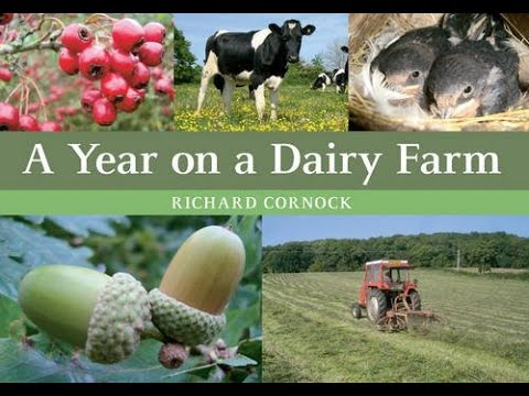 A Year on A Dairy Farm. Part 1