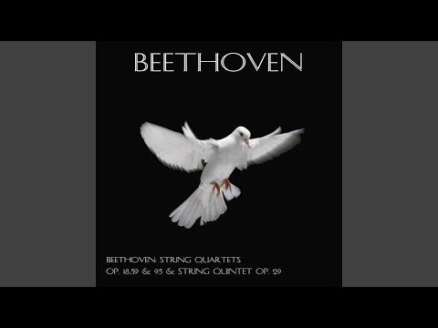 String Quartet No. 4, In C Minor, Op. 18 : I. Allegro, Ma Non Tanto