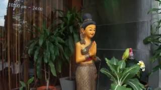 Famous Thai Body Massage Silom Road Bangkok..right Near the Shangarila Chinese Restaurant