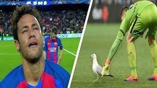 УВАЖЕНИЕ В ФУТБОЛЕ | FOOTBALL RESPECT
