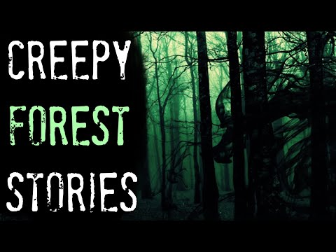 4 TRUE Creepy Forest Stories | True Scary Stories