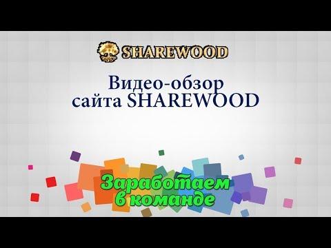 Обзор сайта Sharewood. Бесплатные курсы для обучения