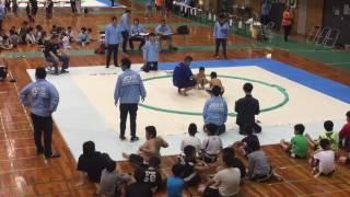 初めてのわんぱく相撲参加!320人と過去最多からの2年生男子3位入賞!