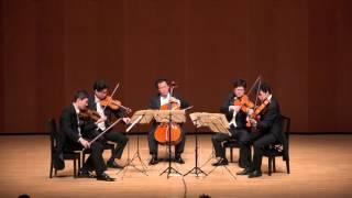 ブラームス 弦楽五重奏曲 第2番 ト長調 Op.111(第3楽章)/ Brahms StringQuintet2-3 (Fix version)