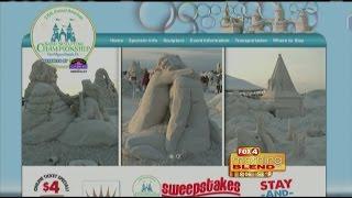 2014 American Sand Sculpting Championships 11/20/14