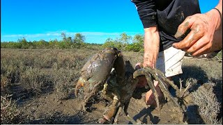 Catching MUD CRABS BARE HANDED! - Salt & Pepper Crab