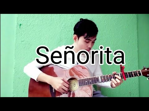 Senorita Lyrics From Znmd