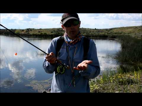 How To Fly Fish Chironomids In Lakes For Trout