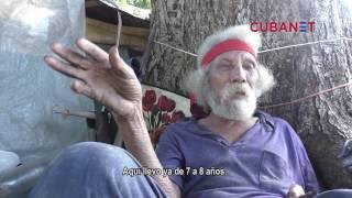 El cubano que vive al pie de un Flamboyán
