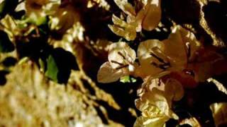 Op.81-No.1 Mazurka | Joshua Bell