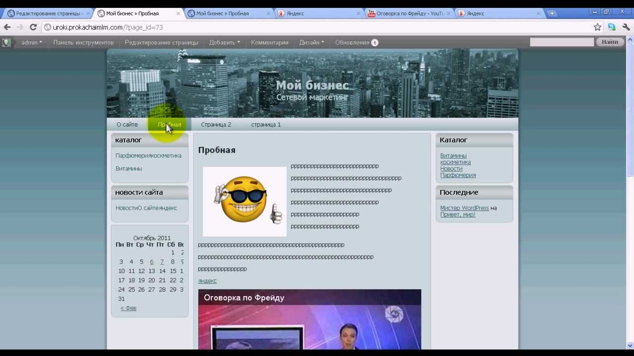 Как вставить текст, видео, картинку | WordPress уроки ...