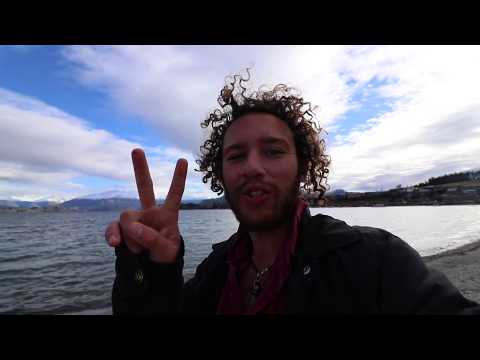 Ultimate Dunedin road trip