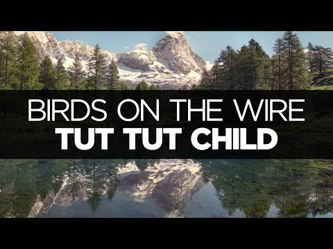 [LYRICS] Tut Tut Child - Birds on the Wire (ft. Augustus Ghost)