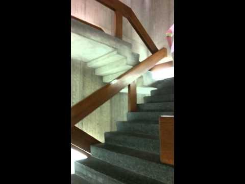 Item 102, Regenstein Library Escherian stairwell (1/2)