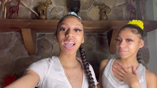 Braided Ponytail Tutorial ( SUPER FUNNY) | TheWickerTwinz
