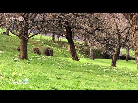 Vergers de Couvin-jardin extr du 10.05.15