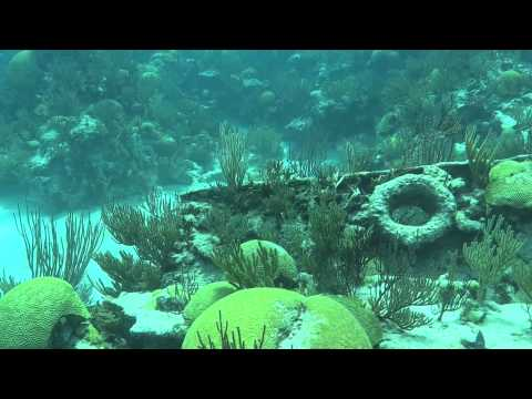 Montana Nola & Constellation Dive June 7, 2014 Bermuda with  Blue Water Divers