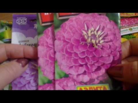 Семена цветов на весну 2020.Рассада цветов на продажу.