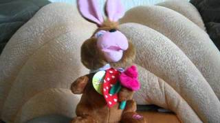 Шоколадный заяц.wmv