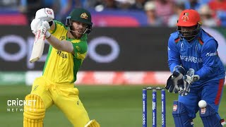 Determined Warner finds his feet: Ponting