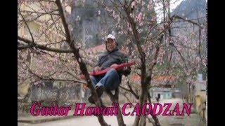 KHÁT VỌNG MÙA XUÂN W.A.Mozart Guitar Hawaii CAODZAN 01DVD63