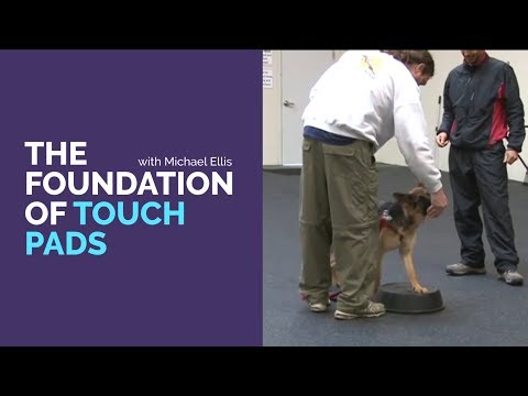 The Foundation of Touch Pads with Michael Ellis