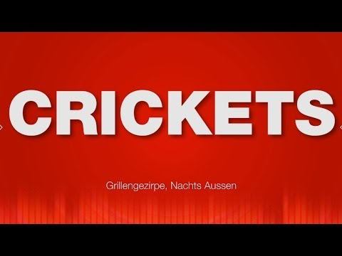 Crickets SOUND EFFECT - Night Ambience Outside Grillengezirpe SOUND