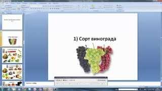 видео Типы вин
