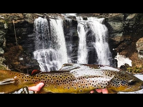 Fishing Massive Waterfalls For HUGE Wild Brown Trout   (We Almost Died!) Opening Day Of Trout Season