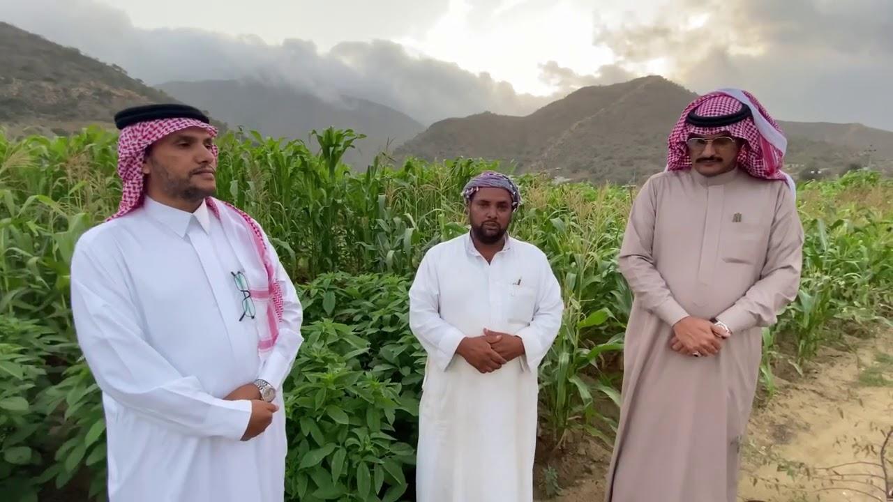 دعم رجل الأعمال عواض بن حسن المالكي بحضور قناة بني مالك الإعلامية