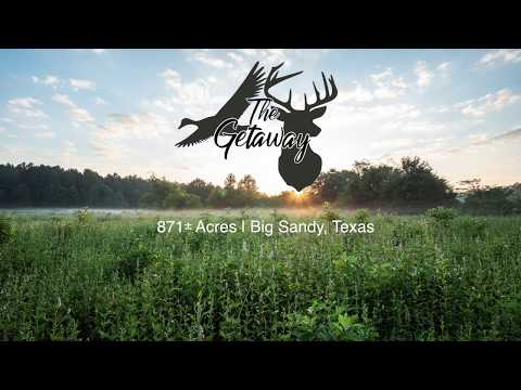 Deer Waterfowl Hog Hunting Land For Sale In East Texas
