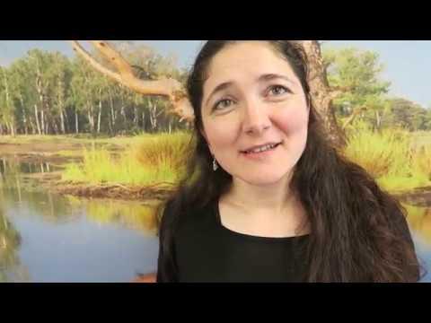 VLOG - ICT & Software Engineering - Word jij mijn nieuwe collega? - Fontys Hogeschool ICT