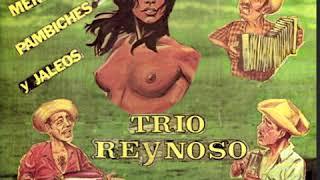 Trio Reynoso con Nicolas Gutierrez - La Corrida De Santa Ana