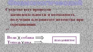 Презентация Вид   эволюционная единица  Его критерии и структура